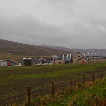 Glenfarclas Malt Whisky Distillery (Schottland) Brennerei Steckbrief