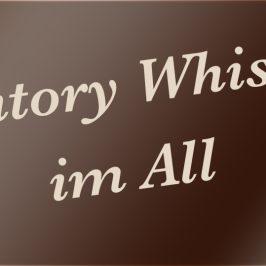 News – Suntory Whisky fliegt 2015 in das Weltall