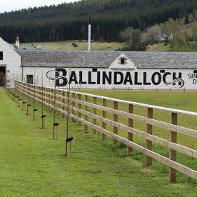 Ballindalloch Malt Whisky Distillery (Schottland) Brennerei Steckbrief