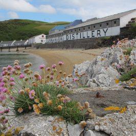 Bunnahabhain Malt Whisky Distillery (Schottland) Brennerei Steckbrief
