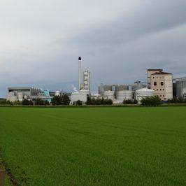 Roseisle Malt Whisky Distillery (Schottland) Brennerei Steckbrief