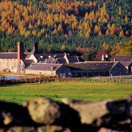 Royal Lochnagar Malt Whisky Distillery (Schottland) Brennerei Steckbrief