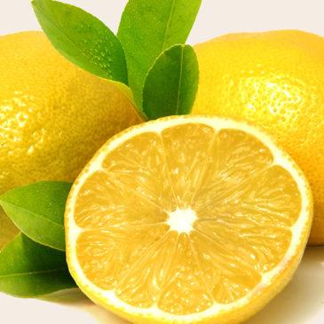 GIN Botanical – Zitronen