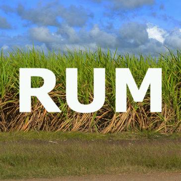 RUM – Am Anfang war das Zuckerrohr – Eine geschichtliche Reise